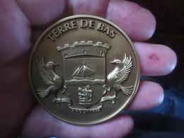 MEDAILLE - TERRE DE BAS 9 AOÛT 1882- AVEC LES COMPLIMENTS DU MAIRE ET DU CONSEIL MUNICIPAL - Royaux / De Noblesse