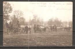 Carte P De 1918 ( Onnens / Les Transports Des Betteraves ) - VD Vaud