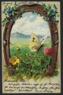 Papillon - Butterfly - Vlinder - Hoefijzer - Horseshoe - Hufeisen - Fer à Cheval - Gaufree - Reliëf - Insectes