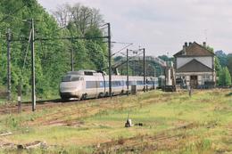 Héricourt (70) 15/05/2005 La Rame TGV PSE N°64 Assurant  Le Train 5430/1 Marseille/Strasbourg  Passe En Gare D'Héricourt - Autres Communes