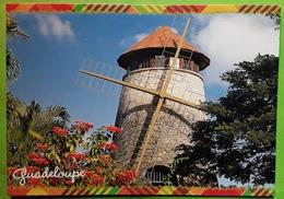 STE SAINTE ANNE, Guadeloupe, Moulin à Vent, à Canne à Sucre, Section Chateaubrun, 18 E Siècle,Windmill Windmuhle  TB - Moulins à Vent