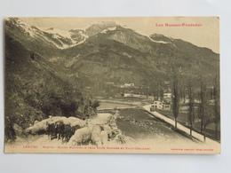 C. P. A. : 64 LARUNS : Sortie, Route Nationale Vers Eaux-Bonnes Et Eaux Chaudes, Moutons - Laruns