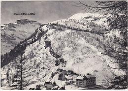 ALPE DEVERO - VERBANIA - VIAGG. 1952 -18689- - Verbania