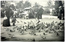 LES PIGEONS - MONTE-CARLO - Monte-Carlo