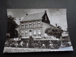 Belgique  België  ( 2795 )   Zaffelare   CPSM - Other