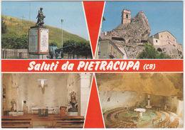 PIETRACUPA - CAMPOBASSO - SALUTI DA... -VEDUTINE -30236- - Campobasso