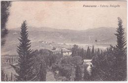 POMARANCE - PISA - FATTORIA PALAGETTO - PANORAMA -30281- - Pisa