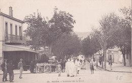 Saida. Avenue De La Gare. Tbe Non écrite - Saida