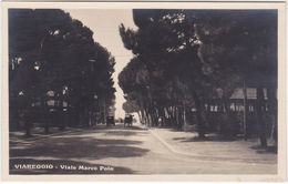 VIAREGGIO - LUCCA - VIALE MARCO POLO -22542- - Lucca