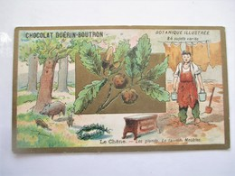 Chromo_GUERIN BOUTRON_Botanique Illustree..LE CHENE_Les Glands Le Tanin Meubles_Menuisier - Guérin-Boutron