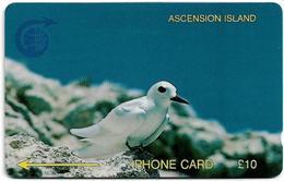 Ascension Island - C&W - GPT - 3CASB - Fairy Tern, 1992, 5.000ex, Used - Ascension (Insel)