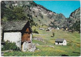 GOGLIO - BACENO - VERBANIA - VIAGG. 1971 -9707- - Verbania