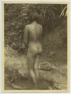 Bali . Femme Nue De Dos . Années 30 . - Asians