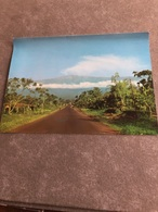 Buea  Province Du Sud-Ouest Vue Du Mont Cameroun - Cameroun
