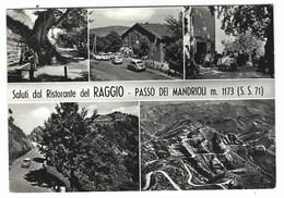 4293 - PASSO DEI MANDRIOLI SALUTI DAL RISTORANTE RAGGIO 5 VEDUTE 1965 FORLI CESENA - Italia