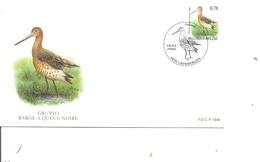 Belgique - Buzin - Oiseaux (  FDC De 2006 à Voir) - FDC