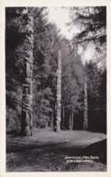 Alaska Sitka Totem Poles Along Lover's Lane Real Photo - Sitka