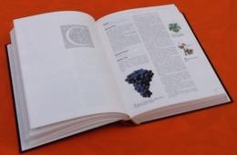 Larousse   Vins Et Vignobles De France  (1995) - Enzyklopädien