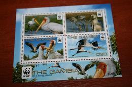 WWF  Gambia  Rare Mini-block   Birds - Unclassified