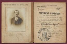 060320 - TRANSPORT 1903 Livret De Cocher Mairie De Lyon - Permis De Conduire Cheval Génissieux Photo - Vervoer