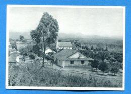 NY260, Station Missionnaire D'Ebanga, C. J. Bucher Luzern, GF, Non Circulée - Missions
