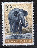 India 1963 Single 30np Stamp Celebrating Wildlife Preservation. - India