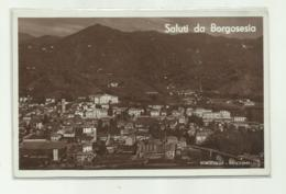 SALUTI DA BORGOSESIA - PANORAMA   VIAGGIATA  FP - Verbania