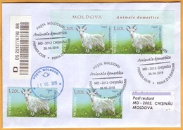 2019 Moldova Moldavie Fauna. Domestic Animals. Private FDC  Goat - Farm