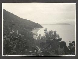 Fotografia D'epoca - Pisciotta (Salerno) - Spiaggia E Panorama - 1930 Ca. - Photos