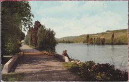 CPA - 76 SAINT ETIENNE DU ROUVRAY - Chemin De Halage - Saint Etienne Du Rouvray
