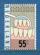 Pays Bas - YT N° 1079 - Neuf Sans Charnière - 1977 - Ungebraucht
