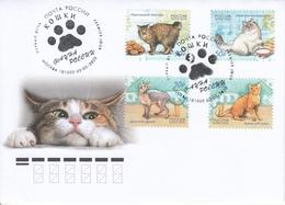 2834-2837 Mih 2611-2614 Ru 03 2020 NO EXTRA FEES FDC 3 Cats Fauna - 1992-.... Fédération