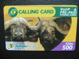 Büffel-Telefonkarte Aus Kenia 500 KShs - Expiring Date 21.11.2008 - Kenia