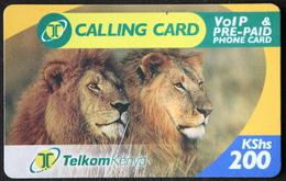 Löwen-Telefonkarte Aus Kenia 200 KShs - Expiring Date 15.07.2008 - Kenia