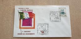 Risorgimento Mazzini Concorso Quadro Art Painting Arts Pittura Villafranca Di Verona 1972 Annullo Cancel - Altri