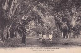 Tahiti - Fataua - Cours De L'Union Sacrée. - Polynésie Française