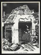 1962  --  LANDEBIA : FONATINE SAINT DIVY . 22 .  3S637 - Unclassified