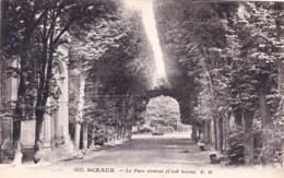 92 - SCEAUX -  Le Parc Reserve ( Clud Sceen ) - Sceaux