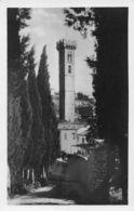 Fiesole Il Campanile Della Cattedral Visto Dal Cimitero - Firenze