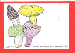 CHAMPIGNON Journée Mycologie Cp Illustrée Par D Minster   * Format 15 Cm X 10.5 Cm - Horses