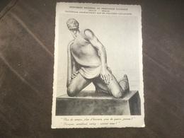 Postkaart Fort Breendonk Monument Nationaal Gedenkteken Aan De Politieke Gevangenen Janchelevici - Puurs