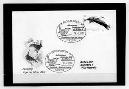 BRD, 2004, Brief (echt Gelaufen) Mit Michel 2393 Und Sonderstempel, Zaunkönig - Vogel Des Jahres 2004 - Covers