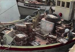 La TURBALLE - Retour De Pêche, Les Sardines - La Turballe
