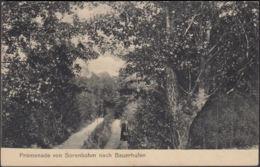 AK Promenade Von Sorenbohm Nach Bauerhufen, Gelaufen 1923 - Pommern
