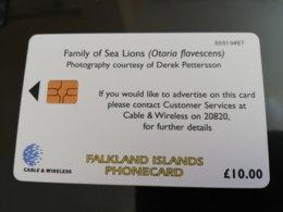 FALKLAND ISLANDS   CHIPCARD  10 Pound SEA LION New  Logo C&W **152** - Islas Malvinas