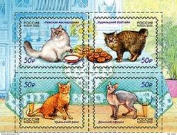 Russia 2020 Cats Set MNH - Ongebruikt