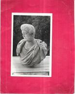 VAISON LA ROMAINE -  84 - Carte Photo - Le Musée - Buste De L'empereur HADRIEN -  - BIS - - Vaison La Romaine