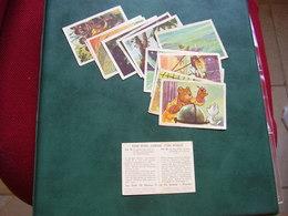Lot Chromos Images Vignettes Tom Poes - Albums & Catalogues