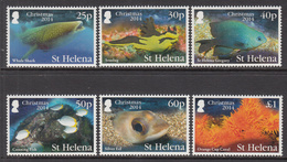 2014 St. Helena Christmas Marine Life Fish Sharks Complete Set Of 6 MNH - Isola Di Sant'Elena