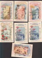 Chromo Fin XIXè / Lot De 6 / Plantes Utiles / Tomates, Pins, Centaurée,souci, Valériane, Serpolet - Autres